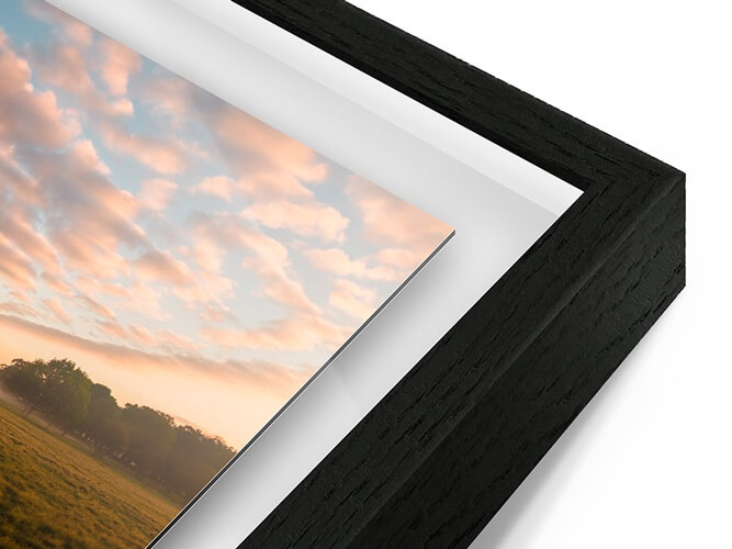 Tablet with a golden frame on a colorful platform playing Photoshop Fundamentals a digital course by Samuel Zlatarev